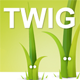 Twig template engine for PHP